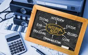 Internal-audit-1-1 内部审计